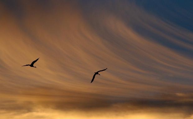 Isenberg Sunset October 2015-1