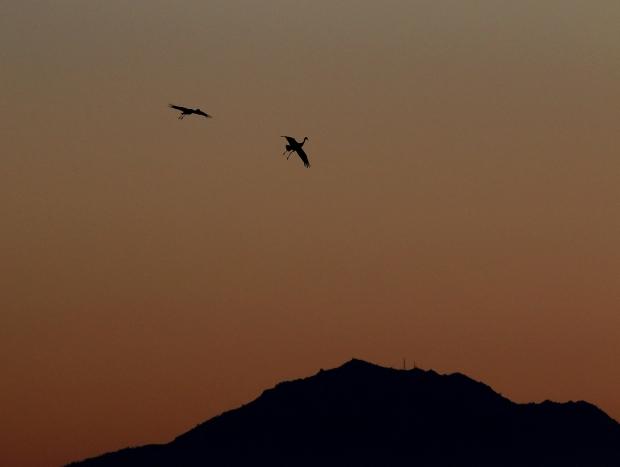 Isenberg Sunset October 2015-23