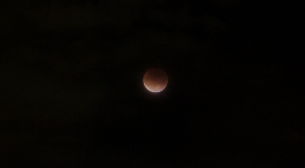 Lunar Eclipse2  2015