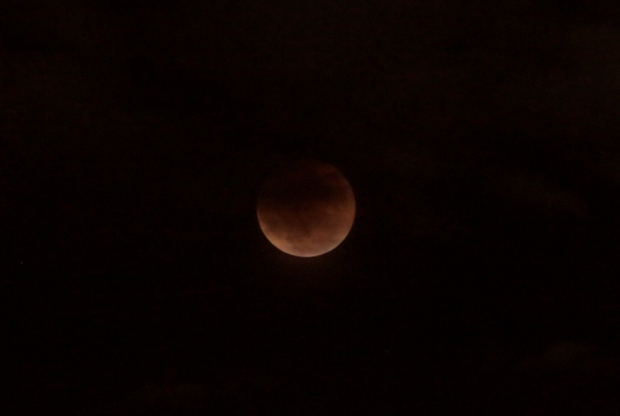 Lunar Eclipse8  2015