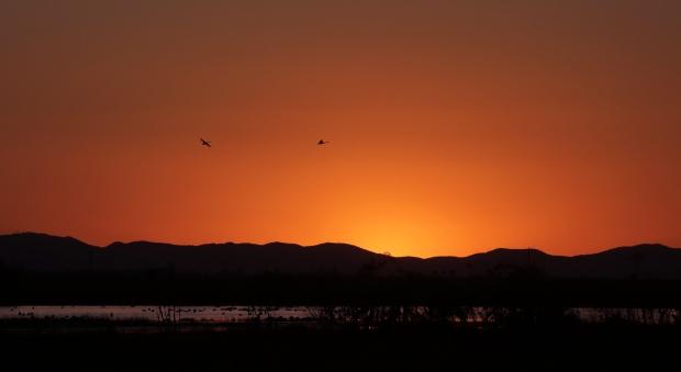 Isenberg Sunset3 November 2015