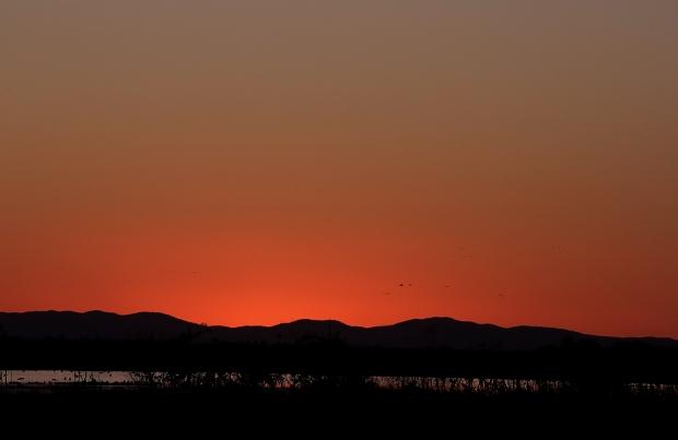 Isenberg Sunset4 November 2015