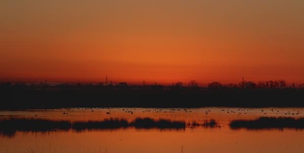 Isenberg Sunrise10 December 2105