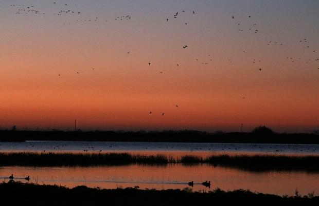 Isenberg Sunrise14 December 2105