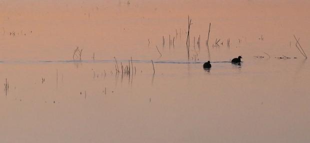 Isenberg Sunrise20 December 2105