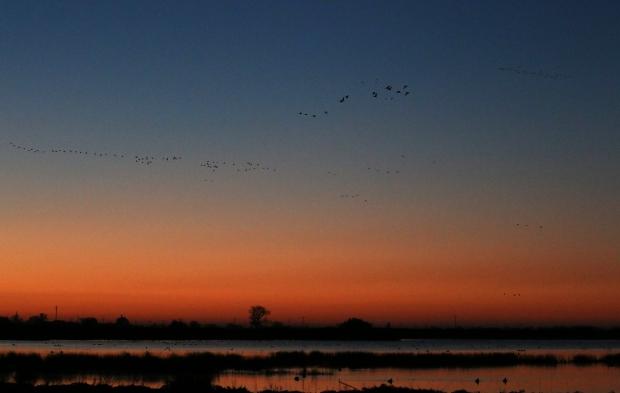 Isenberg Sunrise21 December 2105