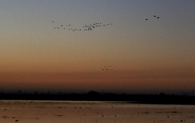 Isenberg Sunrise22 December 2105