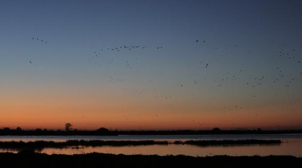 Isenberg Sunrise5 December 2105