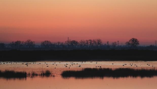Isenberg Sunrise6 December 2105