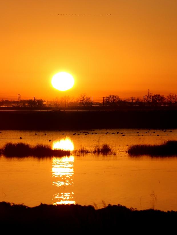 Isenberg Sunrise8 December 2105