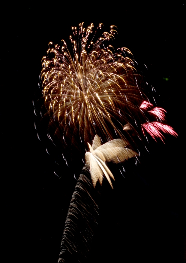 july 4th fireworks30 07-08-16