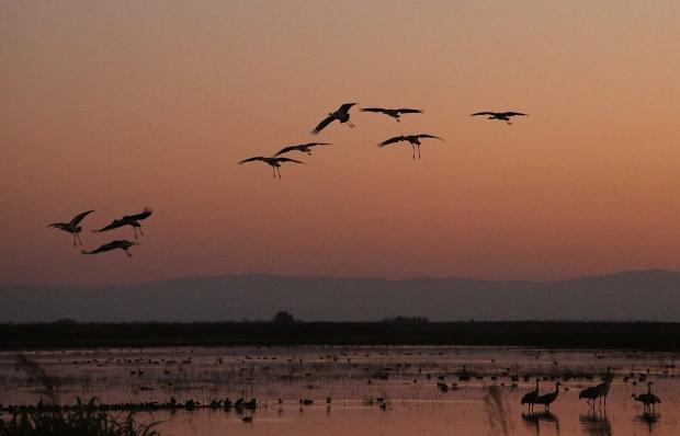 isenberg-november-sunset17