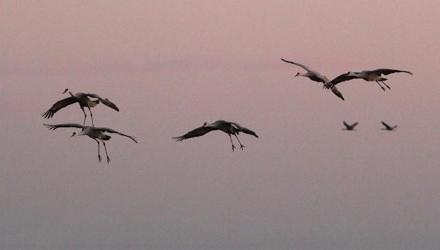 isenberg-november-sunset35