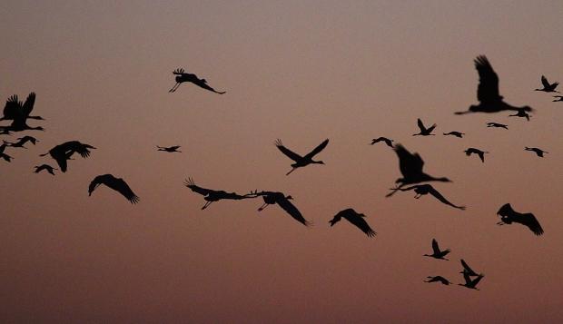 isenberg-november-sunset4