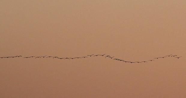 isenberg-november-sunset42