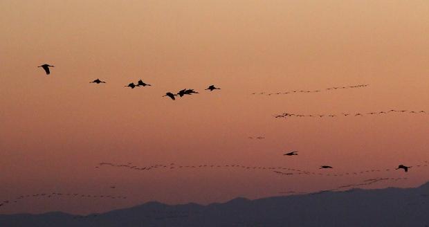 isenberg-november-sunset51