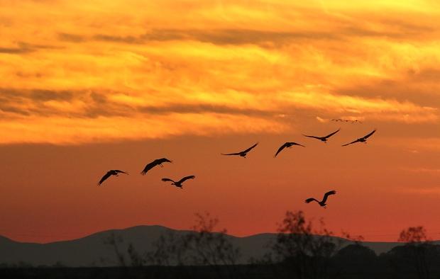 isenberg-november-sunset7