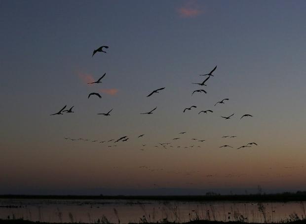 isenberg-november-sunset8