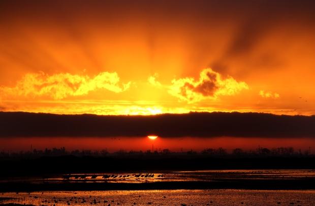 isenberg-sunrise11