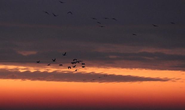 isenberg-sunrise15