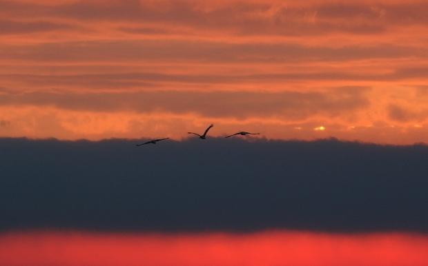 isenberg-sunrise17