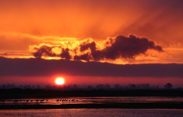 isenberg-sunrise2
