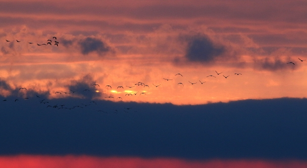 isenberg-sunrise20