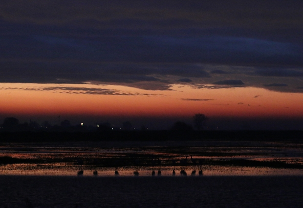 isenberg-sunrise24