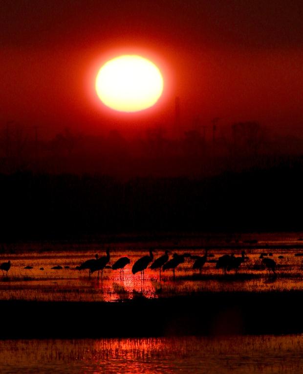 isenberg-sunrise27