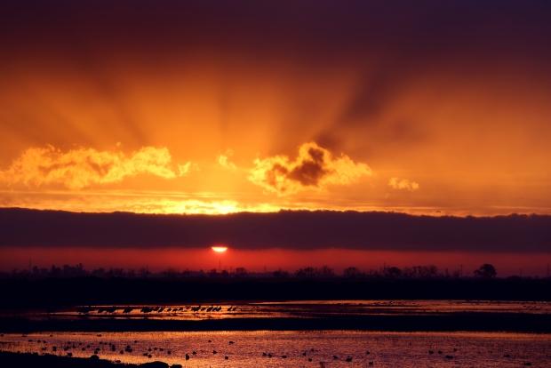 isenberg-sunrise37