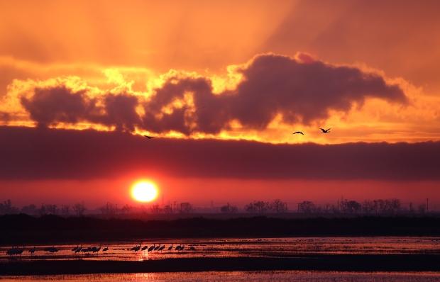 isenberg-sunrise38
