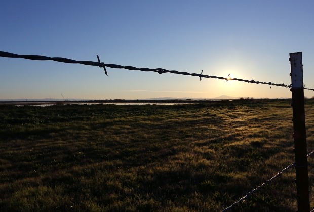 isenberg-sunset14