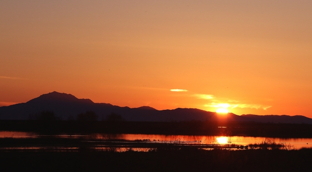 isenberg-sunset3