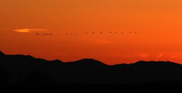 isenberg-sunset4