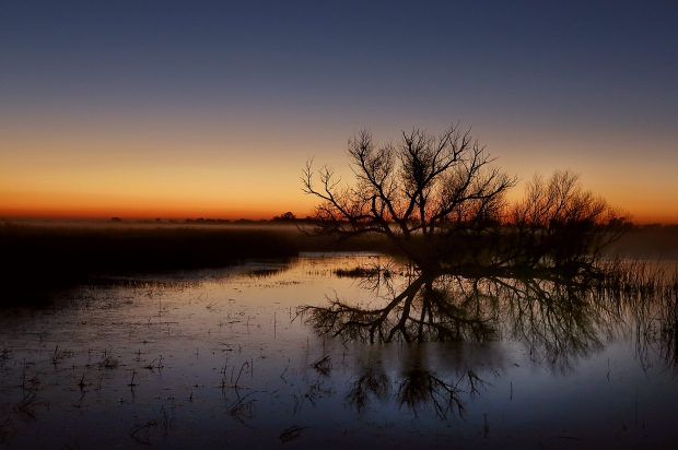 san-luis-merced-national-wildlife-refuge1