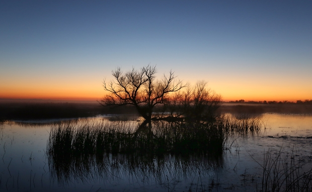 san-luis-merced-national-wildlife-refuge24