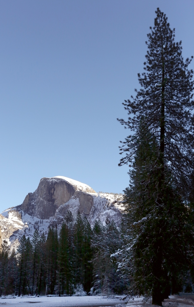 yosemite-winter30